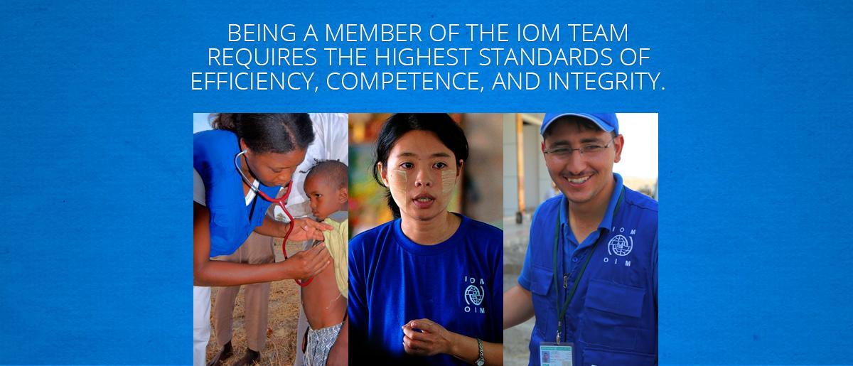UN Volunteer Job